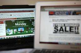 The seizure of the websites comes just a few days ahead of Cyber Monday, the busiest day for online shopping in the US