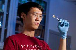 Transparent batteries: seeing straight through to the future? (w/ video)