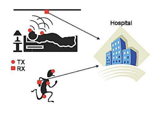 'Ultrawideband' could be future of medical monitoring