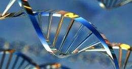 Unpicking the grammar of genes