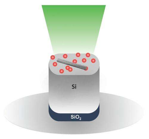 Nanotube growth theory experimentally confirmed