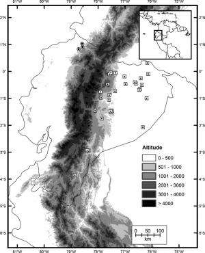 A rather thin and long new snake crawls out of one of Earth's biodiversity hotspots