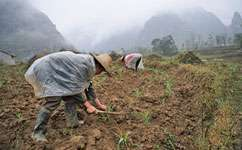 Environmental index could save rural communities