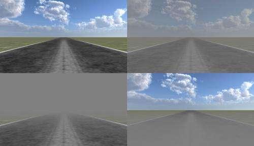 Foggy perception slows us down