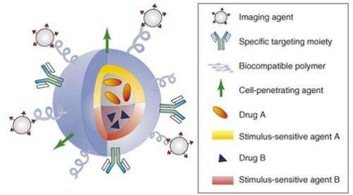 Hearing disorders can be treated with multifunctional nanoliposome therapy