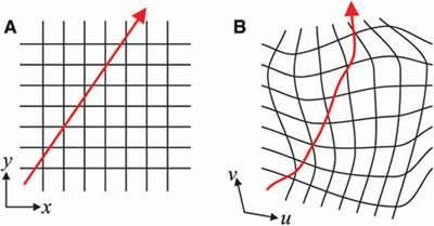 Multimode waveguides bring light around corners