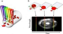 New microscope uses rainbow of light to image the flow of individual blood cells