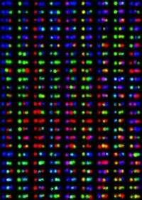 Scientists engineer novel DNA barcode