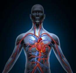 Disruption of cellular signaling identified in pulmonary arterial hypertension
