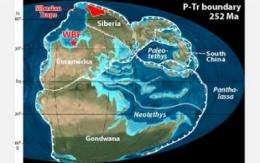 Global extinction: Gradual doom as bad as abrupt