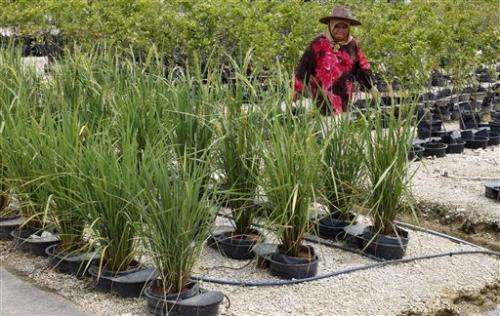 Malaysia firm says high-tech farms can help poor