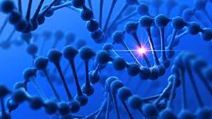 Molecular biology: Genetic disease linked to protein build-up