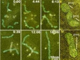 Nanoparticles seen as artificial atoms
