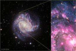 NASA's Chandra sees remarkable outburst from old black hole