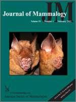 New species of bat found in Vietnam