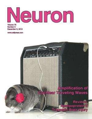 Researcher describes cochlear amplification using novel optical technique