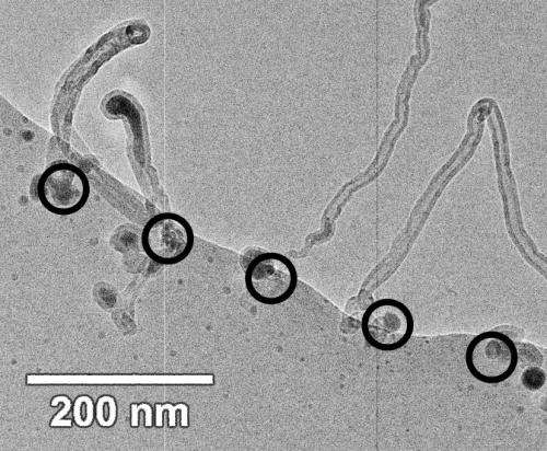 Researchers observe, control, and optimize the growth of individual carbon nanotubes