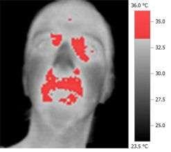 Even non-sexual social contact can raise body temperature