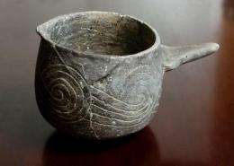 Researchers find evidence of ritual use of 'black drink' at Cahokia
