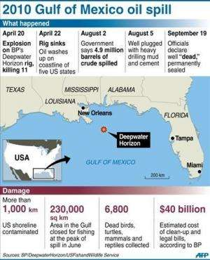 Graphic on the 2010 Deepwater Horizon disaster in the US that killed 11 oil rig workers