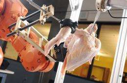 Robot uses 3-D imaging and sensor-based cutting technology to debone poultry