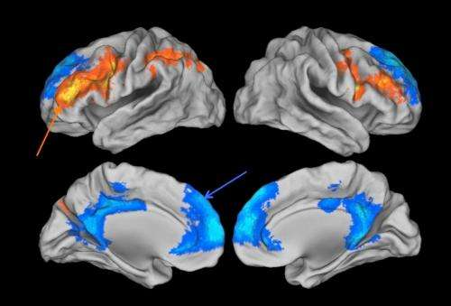 The search for the earliest signs of Alzheimer's