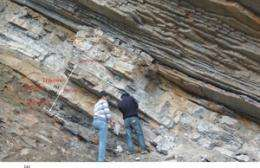China deposits point to cause of Earth's deadliest extinction