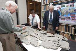 Mysterious 'monster' discovered by amateur paleontologist