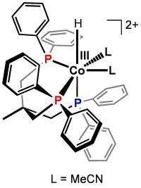 Scientists unlock the mechanism behind improved water-splitting catalysts