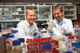 Newly discovered enzyme implicated in the spreading of cancer