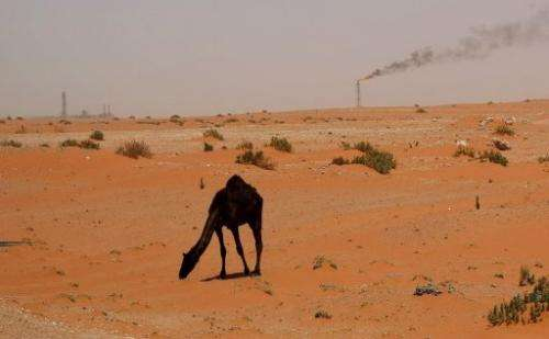 A flame from a Saudi Aramco oil installion is seen in the desert near the oil-rich area of Khouris in 2008