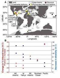 Not by asteroid alone: Rethinking the Cretaceous mass extinction