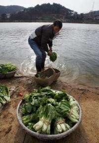 A man washing vegetables in Poyang Lake in 2007