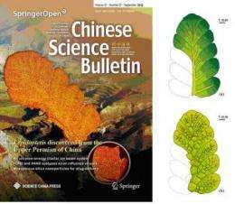 A mysterious seed fern, Lepidopteris, discovered from the Upper Permian of China
