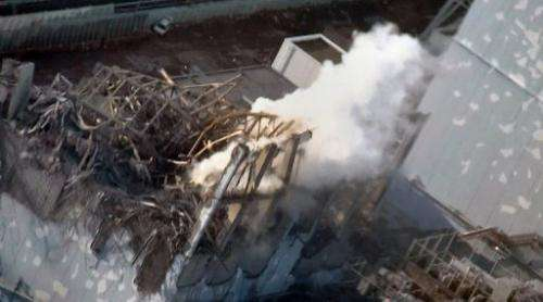 A Tepco image received on March 17, 2011 shows the Fukushima nuclear power plant's third reactor building