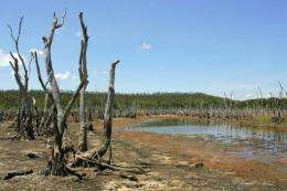 Australia is known for its droughts, cyclones, bushfires and floods