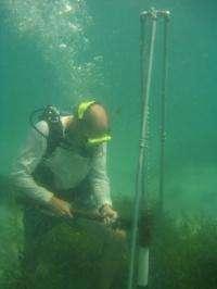 Marine scientist champions Blue Carbon