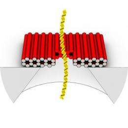 DNA origami puts a smart lid on solid-state nanopore sensors