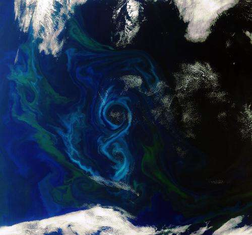 Earth from Space: A southern summer bloom