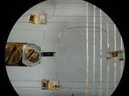 Electron politics: Physicists probe organization at the quantum level