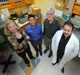 Enzymes may point toward better therapies for prediabetes