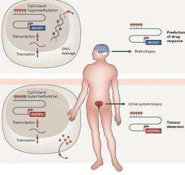 Epigenetics emerges powerfully as a clinical tool