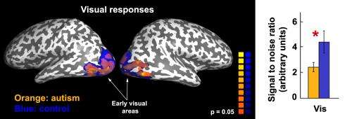 Autistic adults have unreliable neural responses, Carnegie Mellon-led research team finds