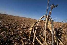 Farmers in Aragon will lose around 1.3 billion euros ($1.7 billion) this season due to the lack of rain