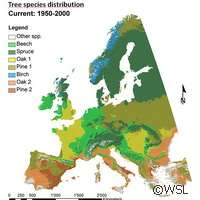 Forests to feel climate change effect