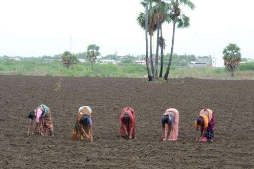 Good monsoon rains are forecast across India in July and August