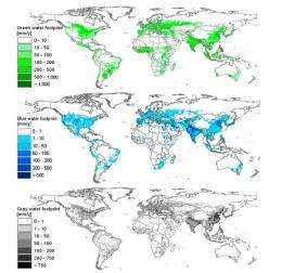 Research duo maps worldwide water footprint with high spatial resolution