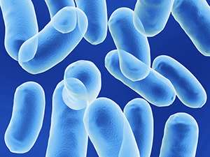 Microbiology: Eavesdropping on bacterial conversations