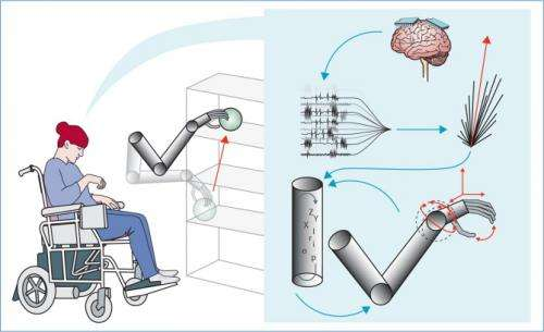Mind-controlled hand offers hope for the paralysed