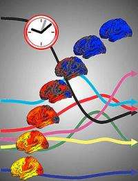 Multi-dimensional brain measurements can assess child's age